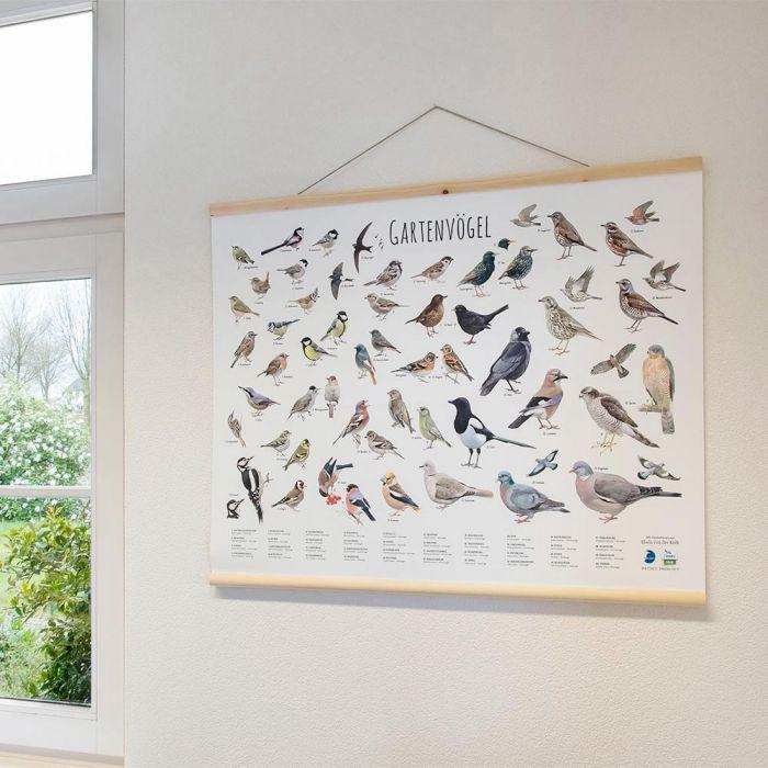 Wandkarte Gartenvögel