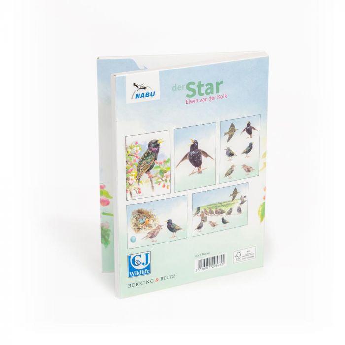 Grußkarten-Set Star (10 Stück)