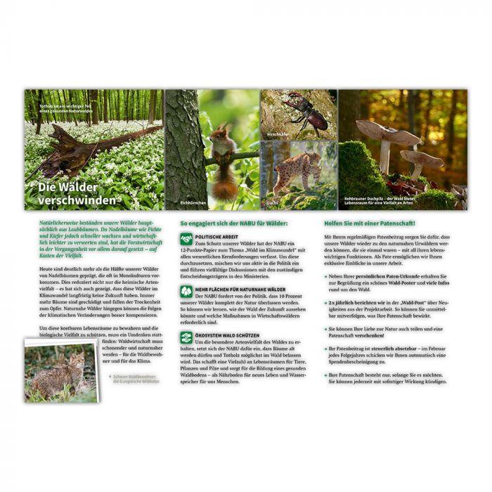 Für die Naturwälder von morgen!