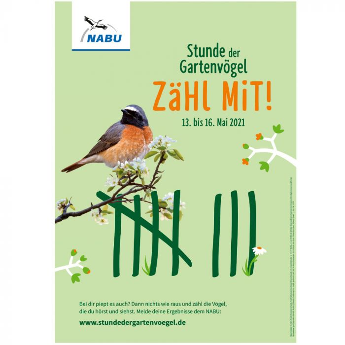 Poster Stunde der Gartenvögel 2021