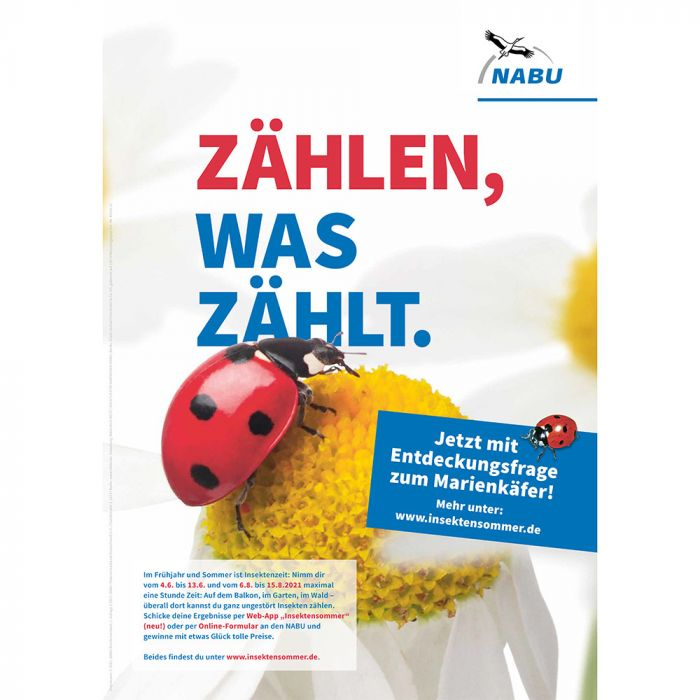 Plakat Marienkäfer - Insektensommer 2021