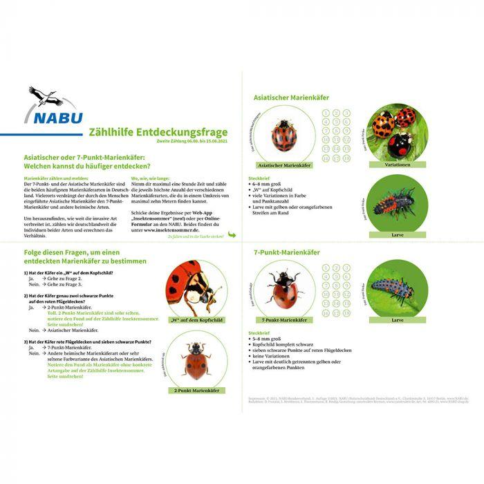 Zählhilfe August - Insektensommer 2021