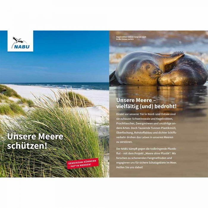 Unsere Meer schützen! - Meeres-Patenschaft