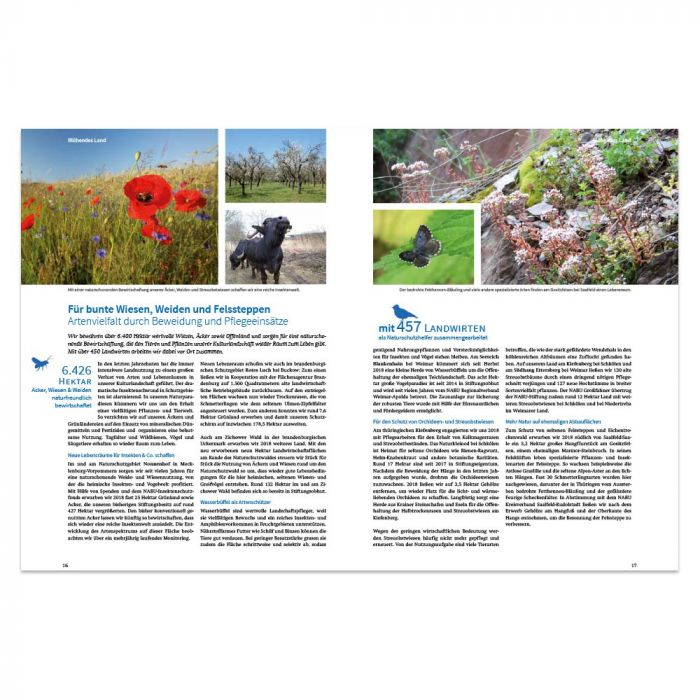 Jahresbericht 2018 - NABU-Stiftung Nationales Naturerbe