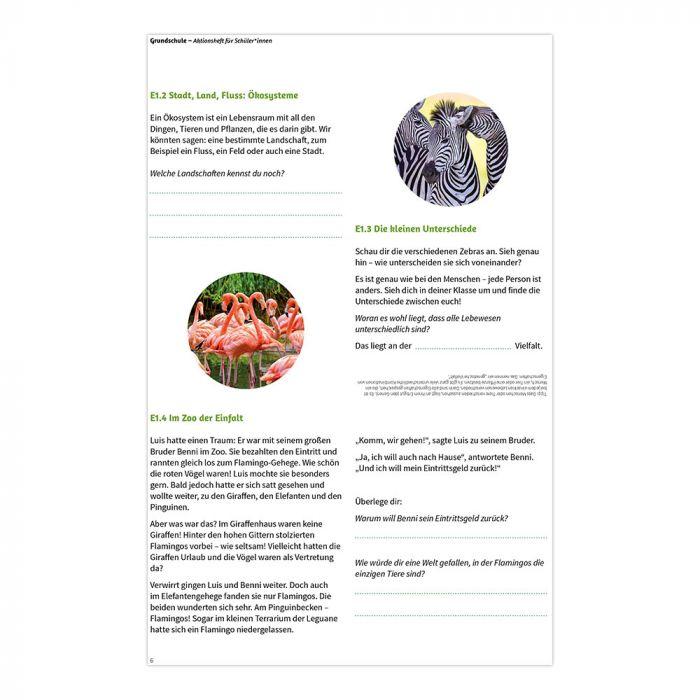 Fokus Biologische Vielfalt: Aktionsheft Grundschule
