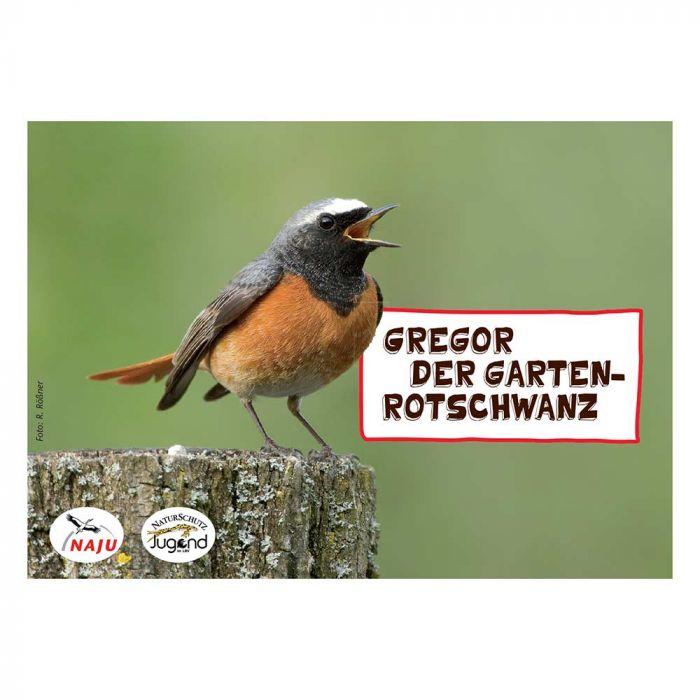 Erlebter Frühling: Steckbriefkarte Gartenrotschwanz