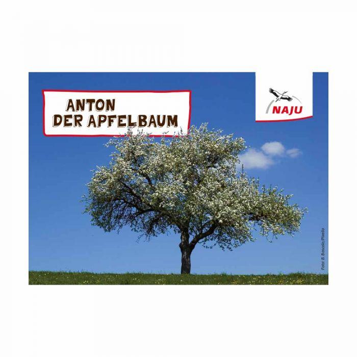 Erlebter Frühling - Steckbriefkarte Apfelbaum