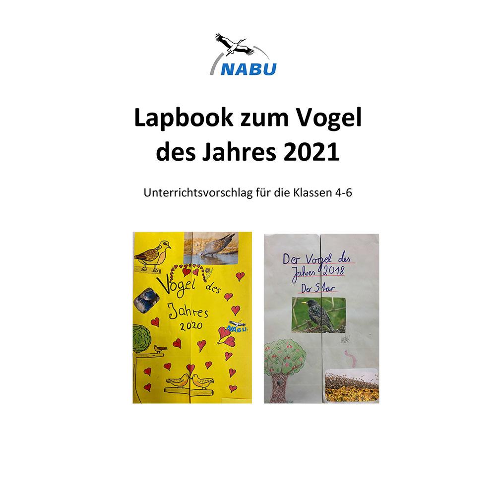 Lapbook zum Vogel des Jahres 2021 - Unterrichtsvorschlag für die Klassen 4-6 (Digital)